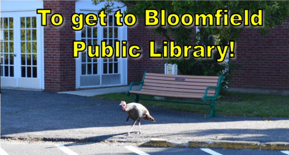 To get to Bloomfield Public Library!